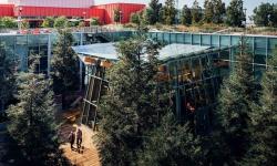 Facebook pokračuje v rozšiřování svého sídla. Současnou novinku tvoří stromy na střeše